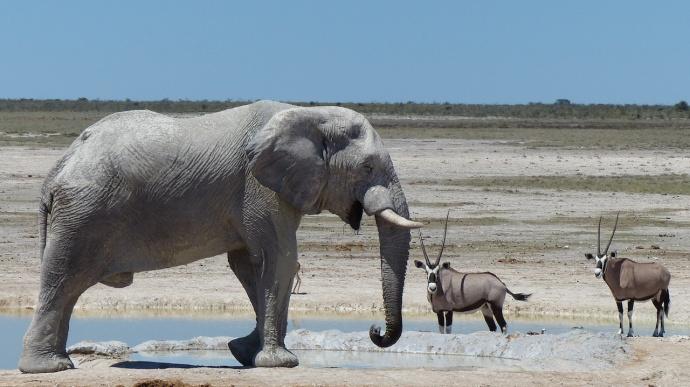 Namibia 2013 107