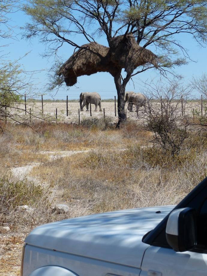 Namibia 2013 138