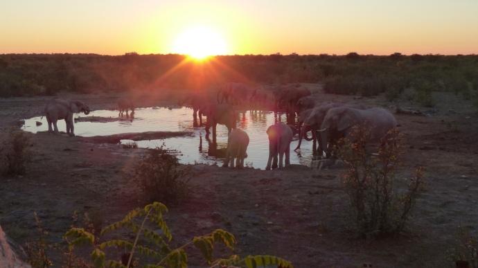 Namibia 2013 157
