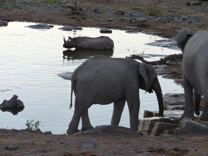 Namibia 2013 195