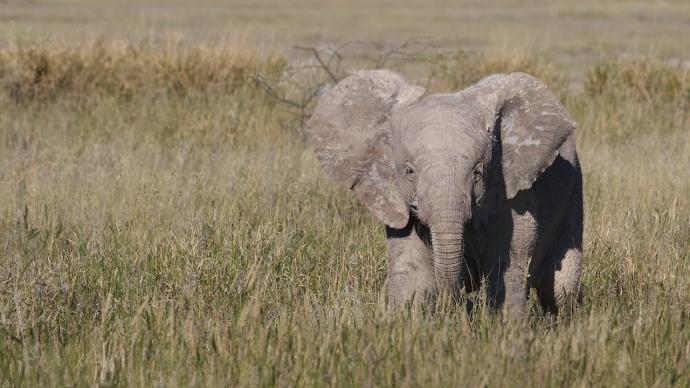 Namibia 2013 208