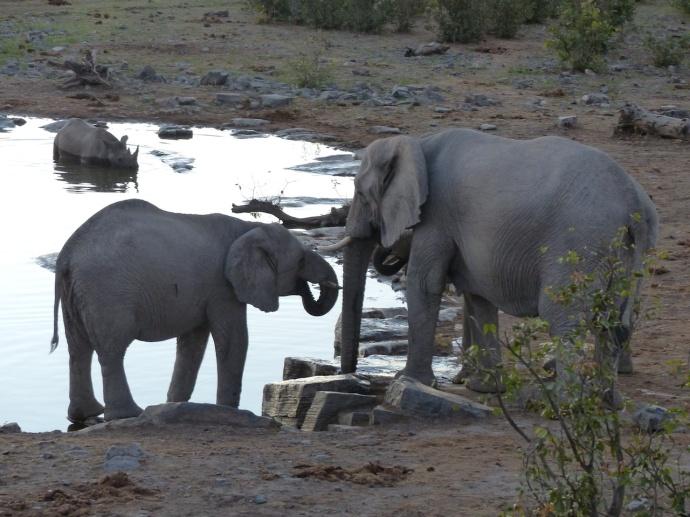 Namibia 2013 209