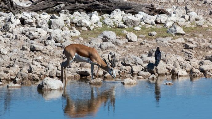 Namibia 2013 23