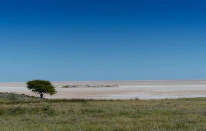 Namibia 2013 250 (1)