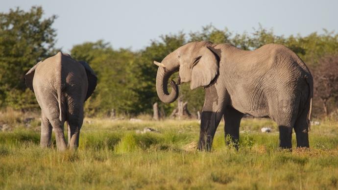 Namibia 2013 265