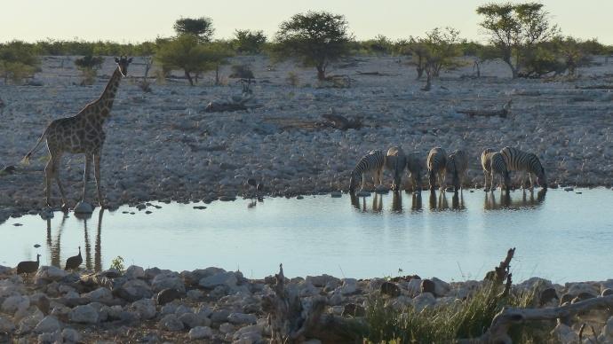 Namibia 2013 27