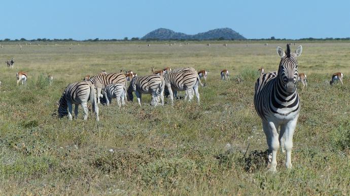 Namibia 2013 280