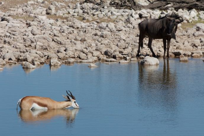 Namibia 2013 37