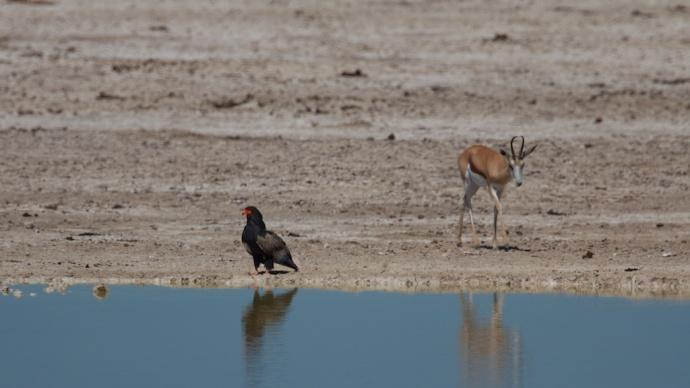 Namibia 2013 432