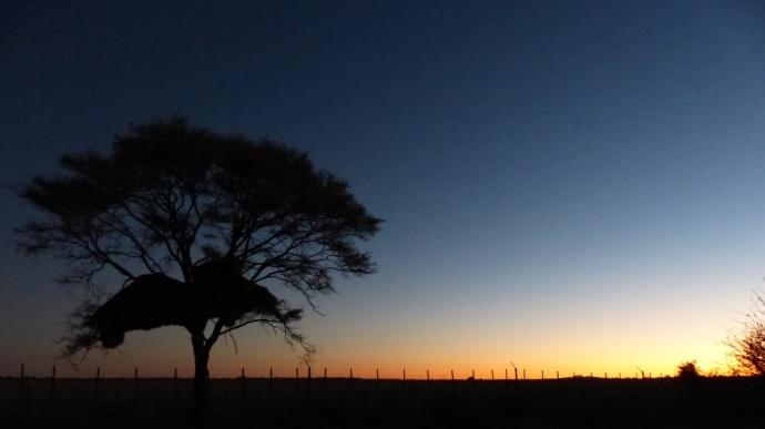 Namibia 2013 52 (1)