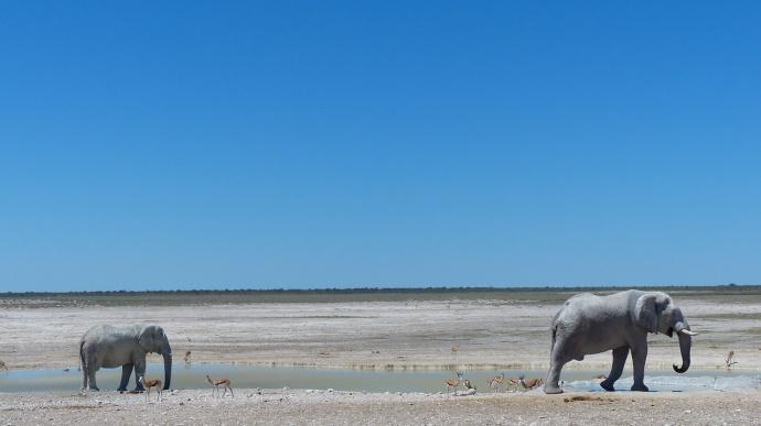 Namibia 2013 73