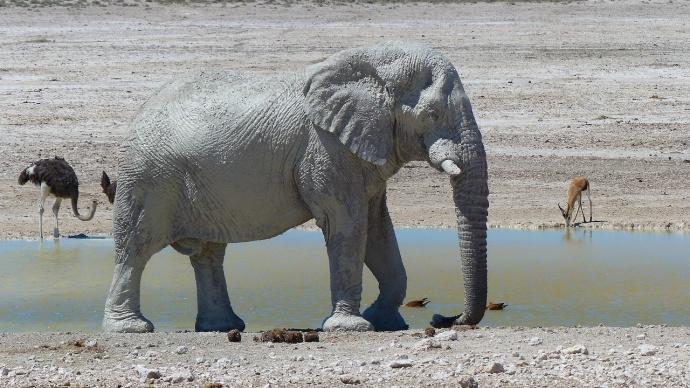Namibia 2013 74