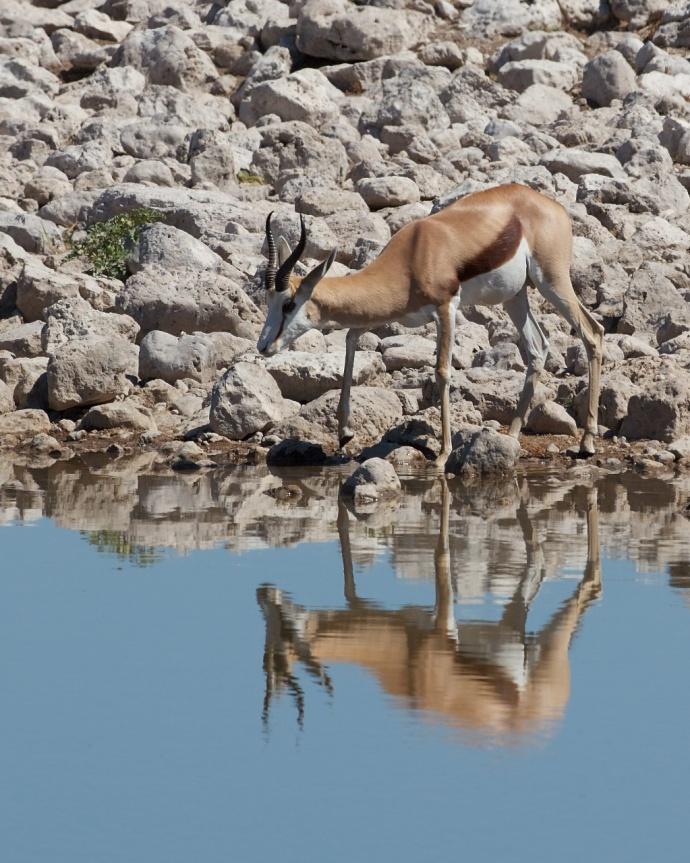 Namibia 2013 85