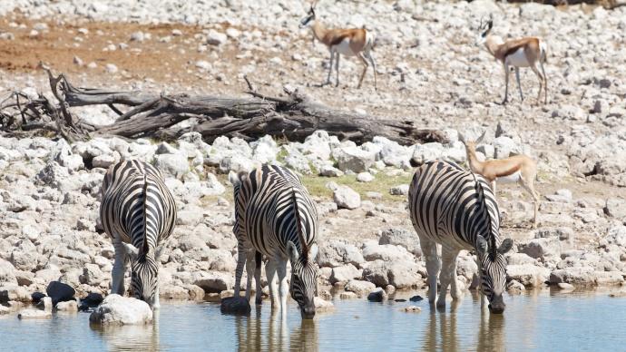 Namibia 2013 94