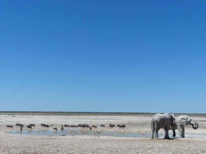 Namibia 2013 96