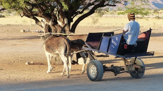 Namibia 2013 172