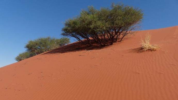 Namibia 2013 210