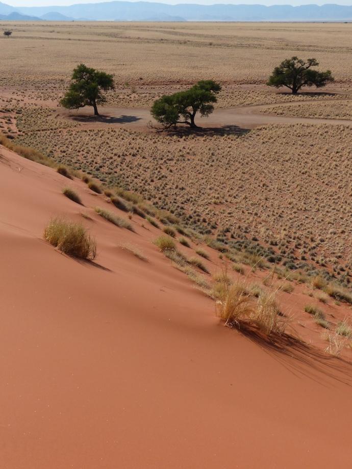 Namibia 2013 222