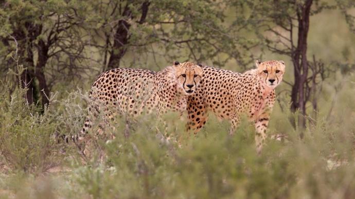 Namibia 2013 255