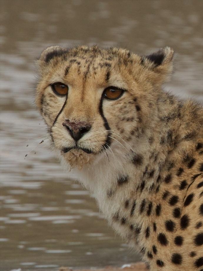 Namibia 2013 308