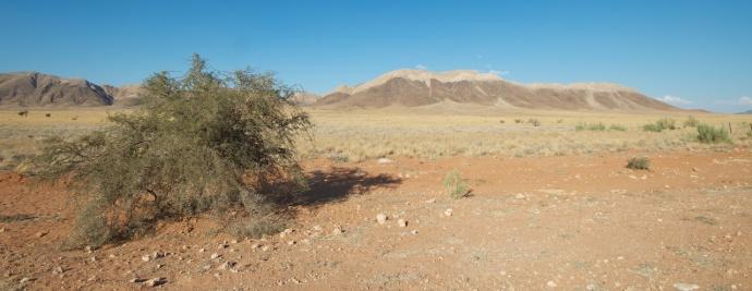 Namibia 2013 32 (1)