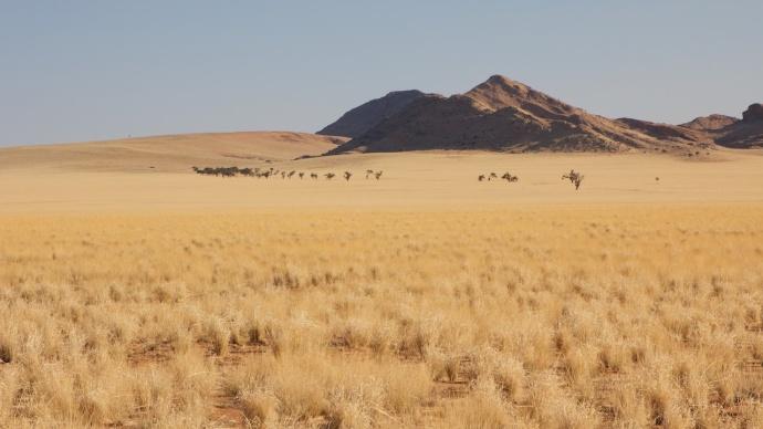 Namibia 2013 34 (1)