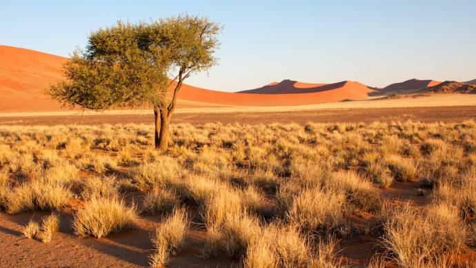 Namibia 2013 424