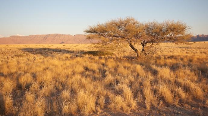 Namibia 2013 47