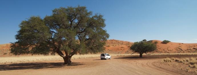 Namibia 2013 56