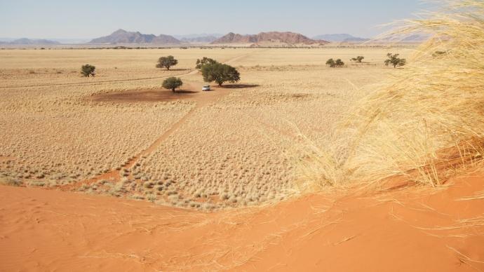 Namibia 2013 60