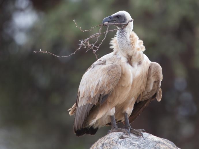 Namibia 2013 99