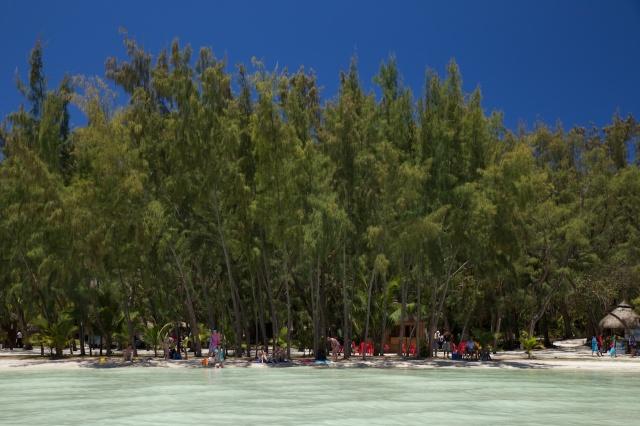 Mauritius 2013 L 250