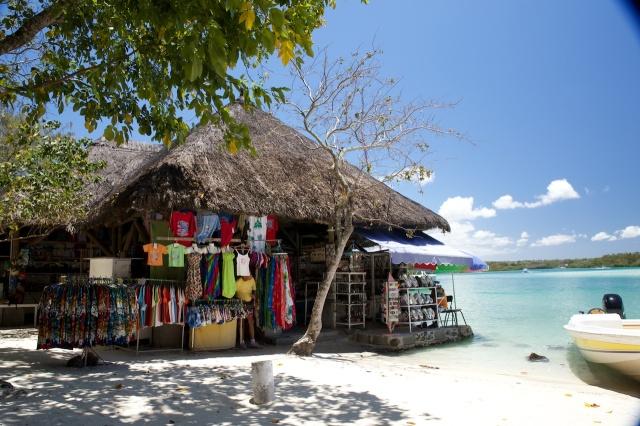 Mauritius 2013 L 263