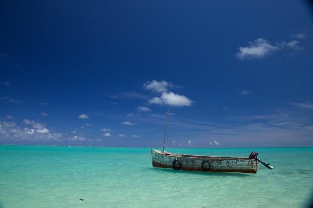 Mauritius 2013 L 306
