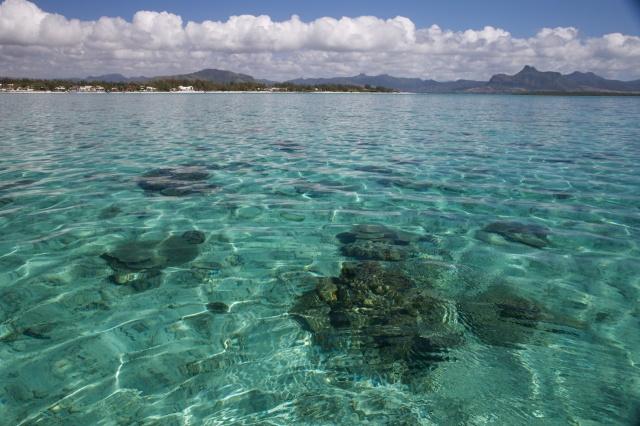 Mauritius 2013 L 44
