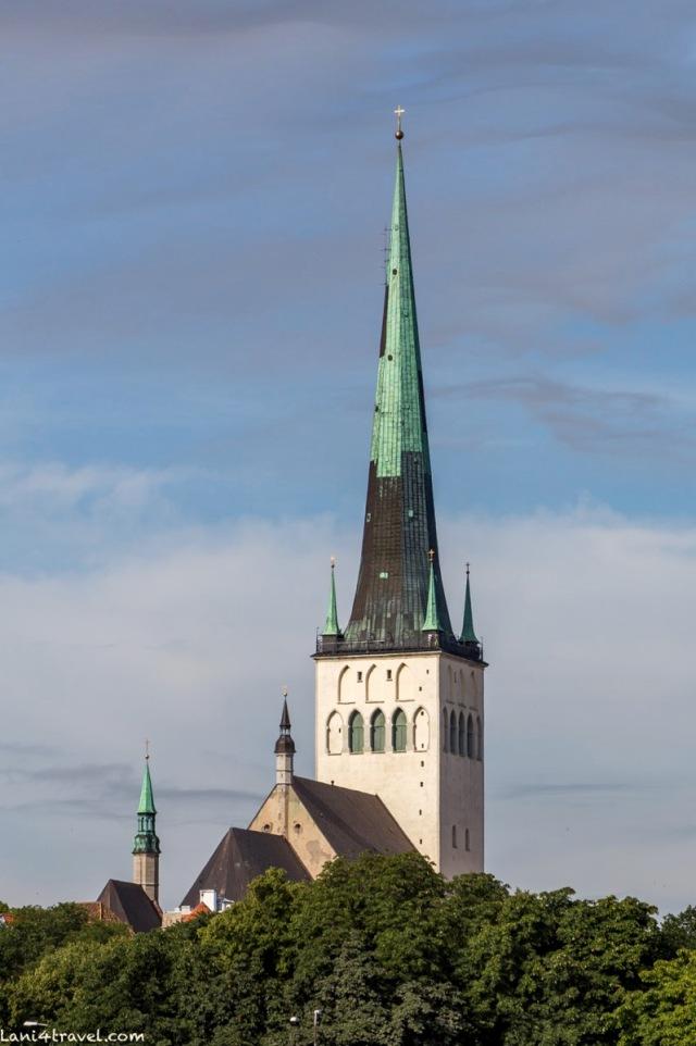 Tallin 8705