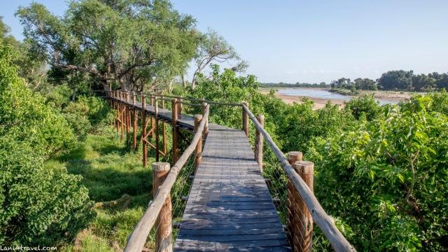 Mapungubwe 5875